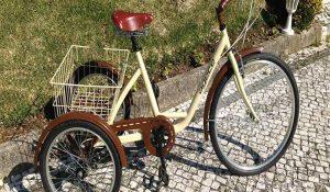 Triciclo 6v Agece acero
