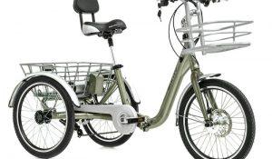 Triciclo Electrico Monty